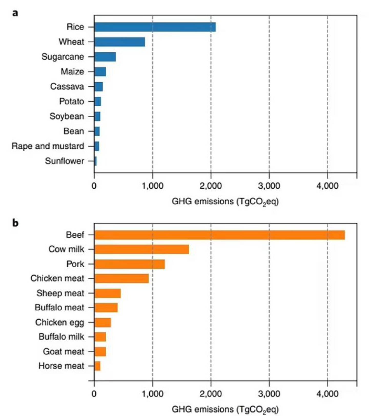 La carne de vacuno fue, con mucho, responsable de la mayor cantidad de emisiones de gases de efecto invernadero de todas las carnes y productos lácteos.