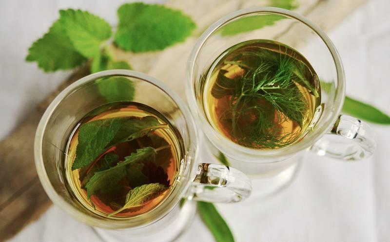 tés herbales