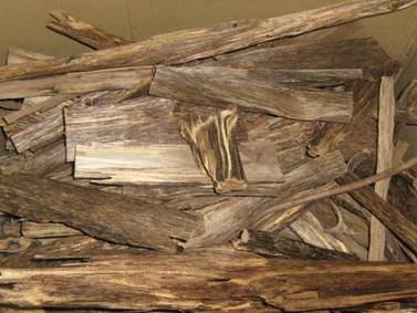 Kynam, la madera más rara y cara del mundo que puede costar más de 10 mil dólares por gramo